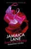 <b>Samantha  Young</b>,Jamaica Lane - Lessen in verleiding