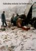 <b>Henk  Voets</b>,Geheime missie in Srebreniça