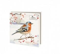 Wmc1005 , Kerstkaart mapje 10 stuks met env michelle dujardin wintervogels