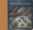 A.W. den Beer Portugael, Het verhaal van de rotten en de muizen