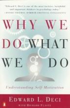 Edward L. Deci,   Richard Flaste Why We Do What We Do