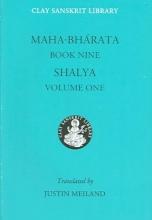 Mahabharata Book Nine (Volume 1)