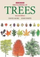 More, David Illustrated Trees