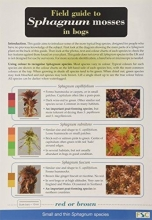 John O`Reilly,   Claire O`Reilly,   Ros Tratt Field Guide to Sphagnum Mosses in Bogs