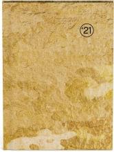 , Agenda 2021 10x15 textures wood gold