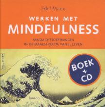 E. Maex , Werken met Mindfulness