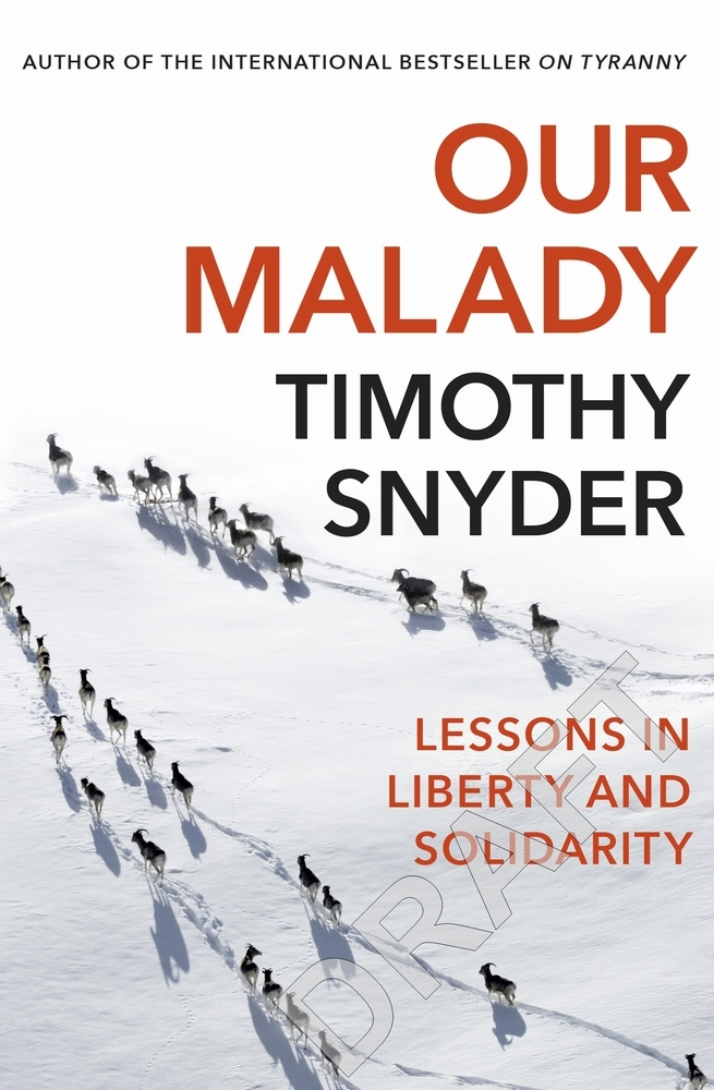 Timothy Snyder,Our Malady
