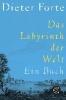 Forte, Dieter,Das Labyrinth der Welt