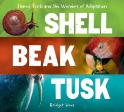 Bridget Heos Shell, Beak, Tusk