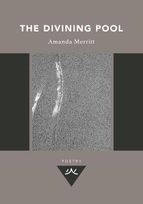 Amanda Merritt,The Divining Pool