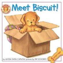 Capucilli, Alyssa Satin Meet Biscuit!