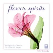 Flower Spirits 2017 Calendar
