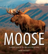 Raycroft, Mark Moose