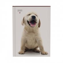 , Agenda 2021 my favourite friends dogs