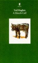 Ted Hughes A March Calf