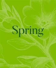 David Trigg , Spring