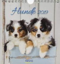 Hunde 2019 Postkartenkalender