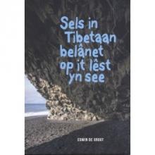 Edwin de Groot Sels in Tibetaan belânet op it lêst yn de see