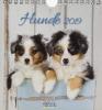 , Hunde 2019 Postkartenkalender