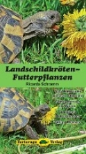 Schramm, Ricarda Landschildkröten-Futterpflanzen