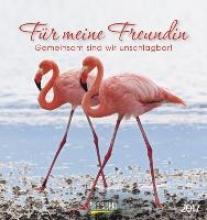 Fr meine Freundin 2017 Postkartenkalender