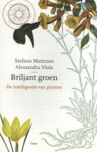 Allessandra Viola Stefano Mancuso, Briljant groen