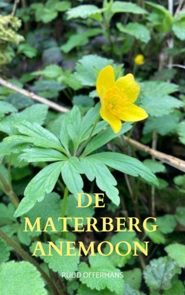 Ruud Offermans,De Materberg anemoon