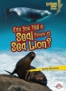 Silverman, Buffy,Can You Tell a Seal from a Sea Lion?