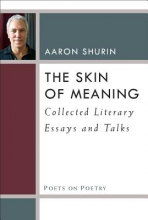Shurin, Aaron The Skin of Meaning