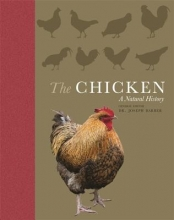 Barber, Joseph The Chicken