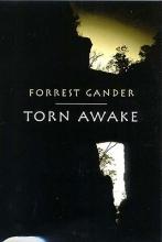Gander, Forrest Torn Awake