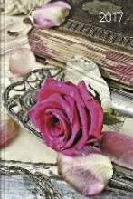 Lady-Timer Rose 2017