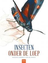 Francois Lasserre , Insecten onder de loep