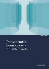 Hubertina Helena Maria Scholtes , Transparantie, icoon van een dolende overheid