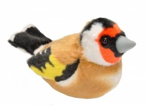 , Vogel met geluid puttertje