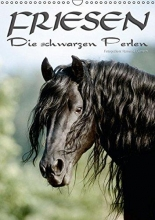 Dünisch - www. Ramona-Duenisch. de, Ramona Friesen - die schwarzen Perlen (Wandkalender 2016 DIN A3 hoch)
