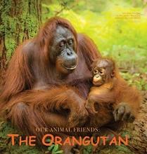 Pagkaihang, Katesalin The Orangutan