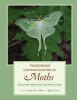 , Pheromone Communication in Moths