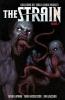 David Lapham, Strain