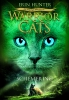<b>Warrior Cats Serie II</b>,5Schemering