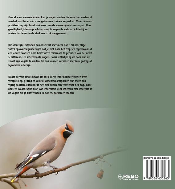 Jaap Schelvis, Arno ten Hoeve,Vogels van tuin, park en stad in Europa
