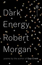 Morgan, Robert Dark Energy