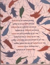 Erik  Os Plint Poeziekaart Navulset `De pinguin en de papegaai` Erik van Os 7331