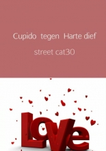 Street cat30 , Cupido tegen Harte dief