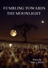 Trish Moyo , Fumbling towards the moonlight