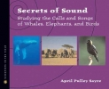 Sayre, April Pulley,Secrets Of Sound