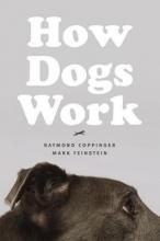 Raymond Coppinger,   Mark Feinstein How Dogs Work