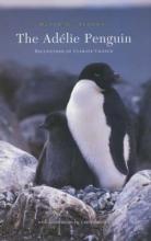 David G. Ainley The Adelie Penguin