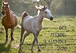 Zitzler, Hans Pferdekalender (Wandkalender 2016 DIN A3 quer)