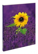 Lavenderfield with Sunflower Blankbook